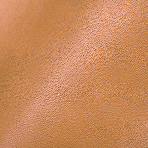 Leather Beige (individualized)
